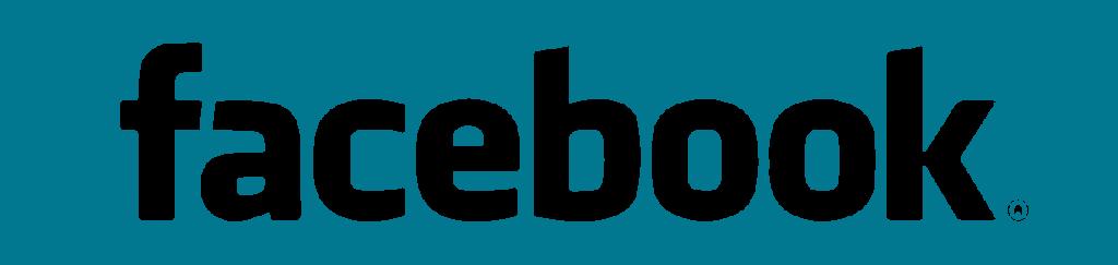 Logo Facebook Céline Bidaud
